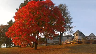 Fall at Ridgeview